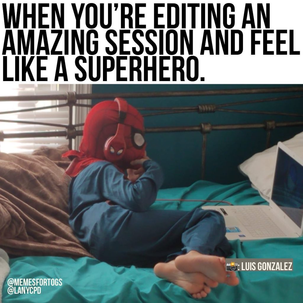 Photo Memes To Brighten Your Day Jessie Lee Photography